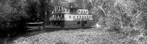 Invasive water plants like the water hyacinth nearly enveloping the water course for a steamer in the St. Johns River in the ca. 1890's.